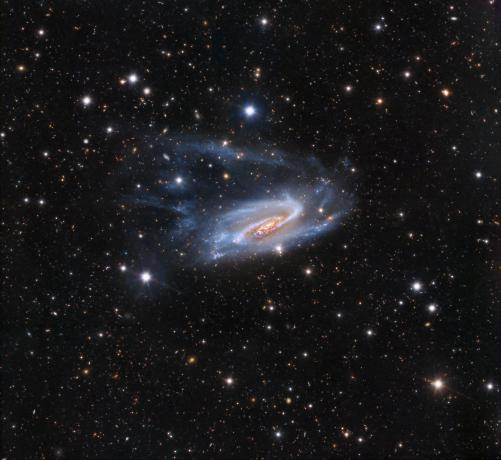 NGC 3981 is a Windblown Mystery