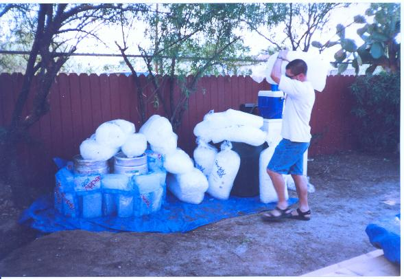 Many kegs of beer need many bags of ice to keep them cool. Fred stacks them high on the afternoon of the Fest.