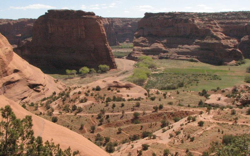 Canyon de Chelly, AZ - Spring 2007, photo by Catherine Neish
