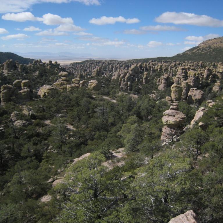 The hoodoos and precariously balanced rocks of Chiricahua National Monument, Arizona.