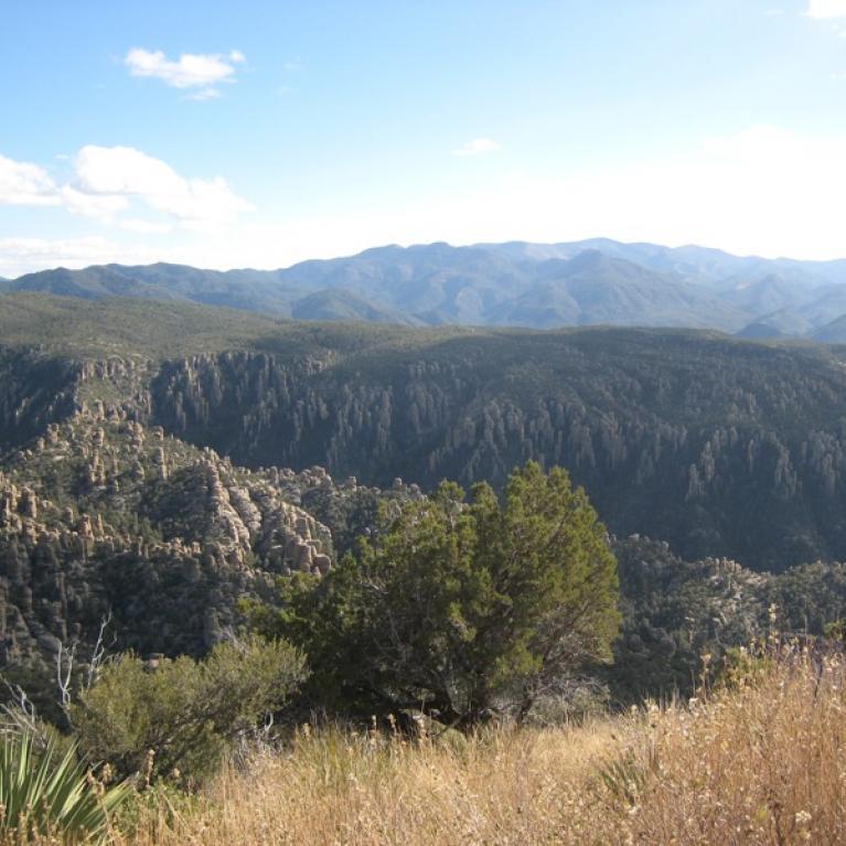 Turkey Creek Caldera