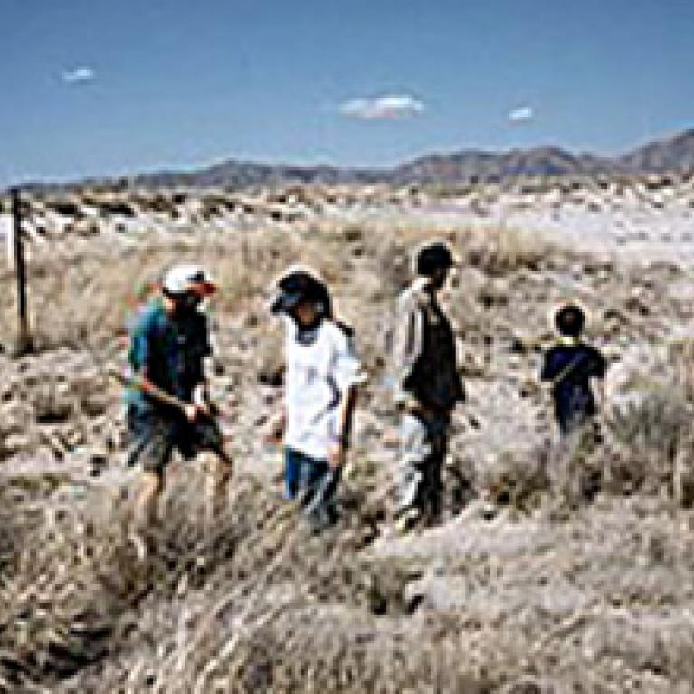 Coming out of the Chiricahuas, we passed through Willcox Playa and investigated the putative clay dunes there.