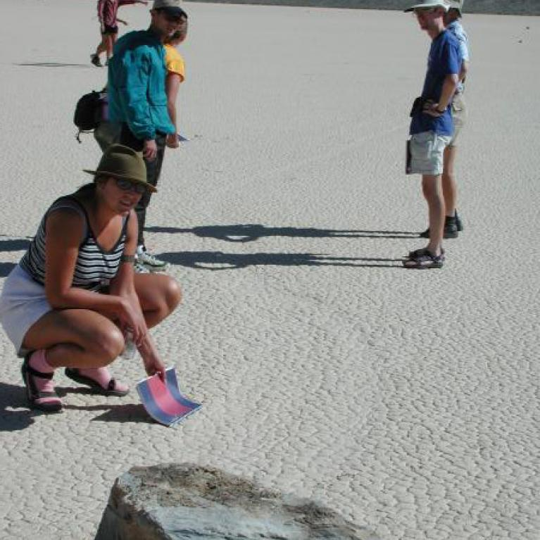 A couple of hundred rocks on this playa (including ones weighing 40 kg) leave trails as they move around over the years.