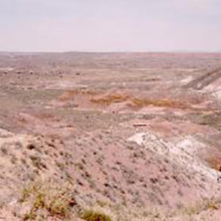 The striking colors of the aptly named Painted Desert.