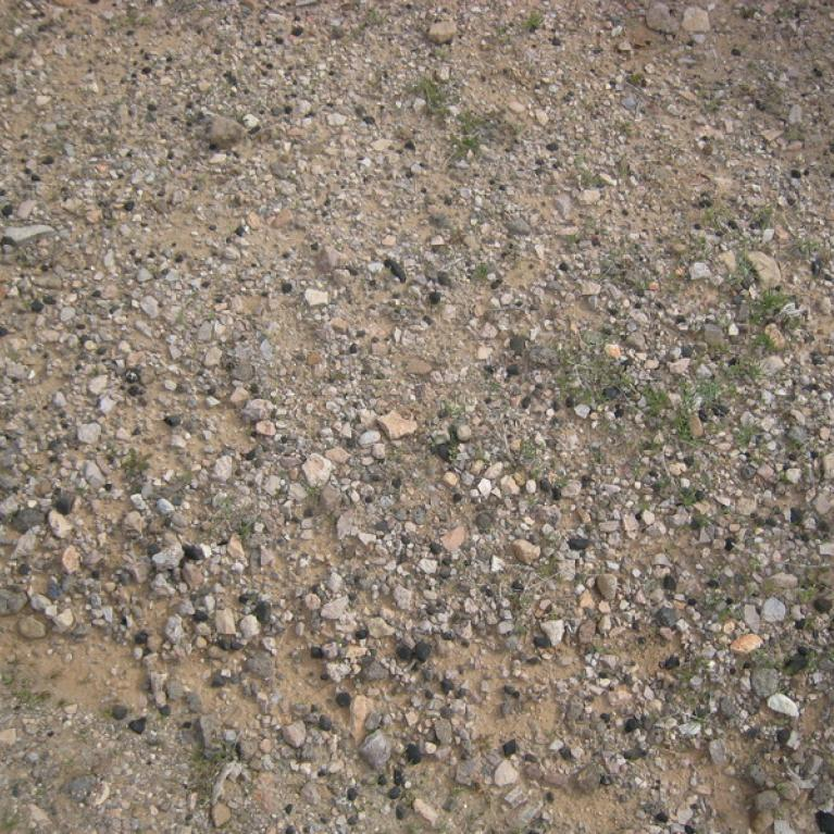 """Near our first stop at Burro Creek, AZ, we stumbled upon a site with numerous samples of obsidian or """"Apache Tears."""""""