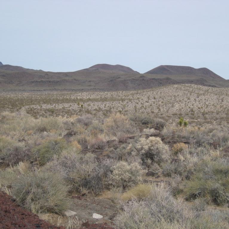 Cima Volcanic Field.