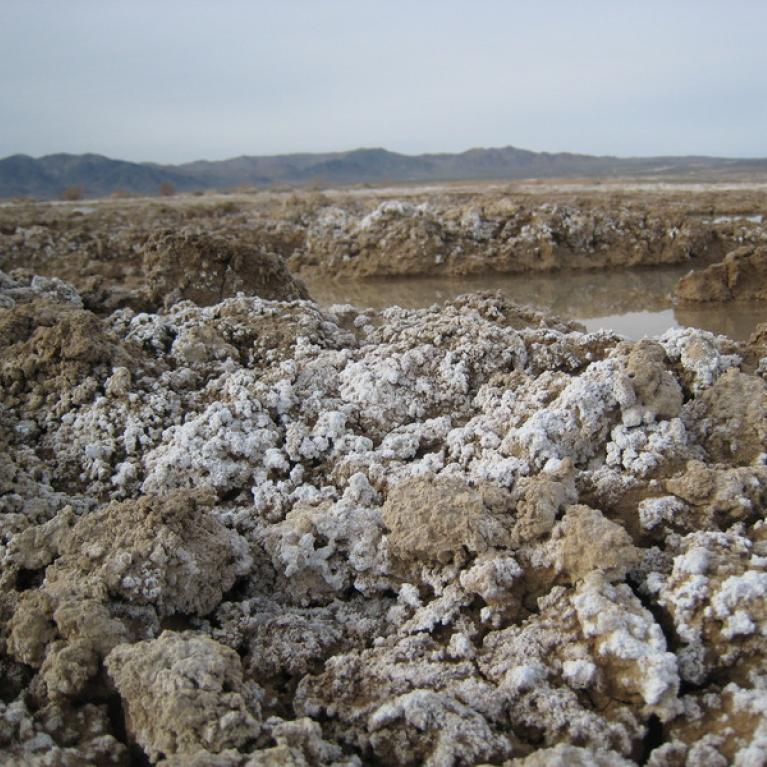 Salt evaporites