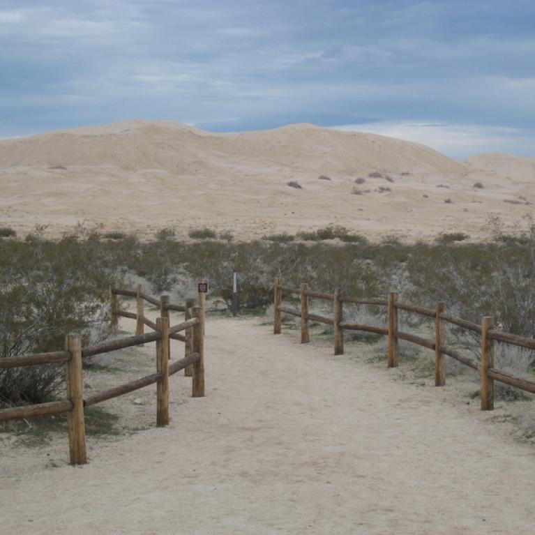 Kelso Dune Field
