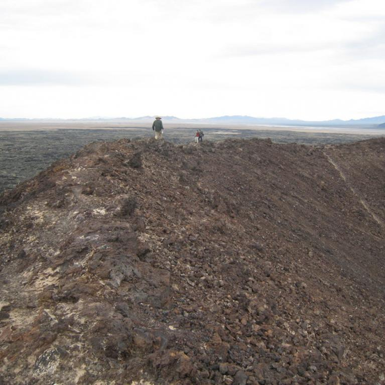 The view from the rim of Amboy Crater.