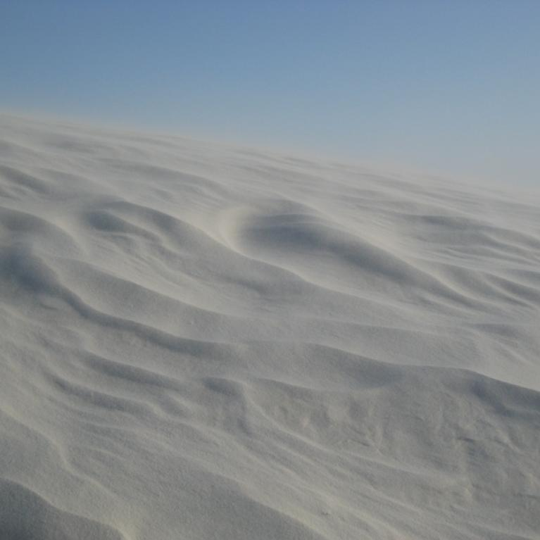 We then ventured up to White Sands, where it was pretty windy.