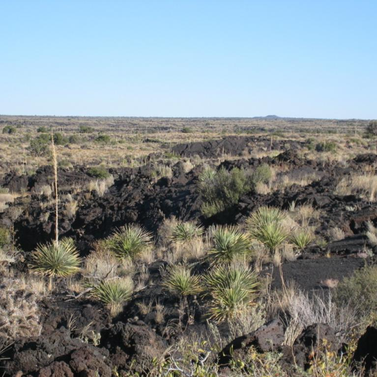 After a bitterly cold and windy night camping, we ventured out onto the Carrizozo lava flow, and discussed what made this particular flow long and thin.