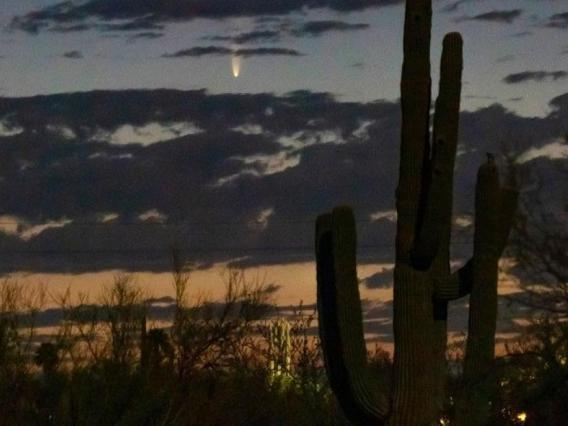Comet NEOWISE captured on July 6, 2020 above the northeast horizon just before sunrise in Tucson. Viewers in the region can find the comet in the northeastern sky near the horizon between 4 and 4:30 a.m. until July 11, after which it will be visible in th