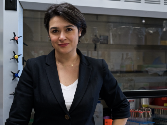 Betül Kaçar studies the origins of life, which is why she is at home in several disciplines. She is an assistant professor at the University of Arizona with appointments in the Departments of Molecular and Cellular Biology, Astronomy and the Lunar and Planetary Laboratory.Carl Philabaum