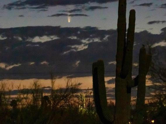 Comet NEOWISE captured on July 6, 2020 above the northeast horizon just before sunrise in Tucson. Viewers in the region can find the comet in the northeastern sky near the horizon between 4 and 4:30 a.m. until July 11, after which it will be visible in the northwestern sky just after sunset, below the Big Dipper. (Photo: Vishnu Reddy)